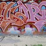 Chari-1995