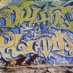 13eme-Cap-1994