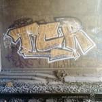 15eme-Smok-1991