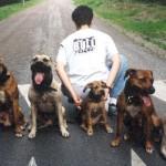 Dogz-1997