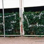 Street-TW-1995
